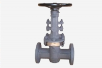parallel seat gate valves