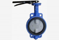 elastomer butterfly valves